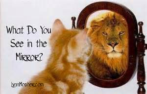 What do you see in the mirror lynn mosher