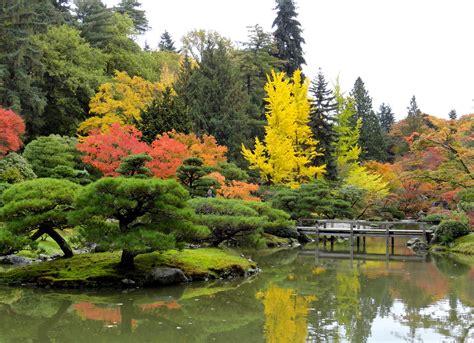 japanischer garten seattle danger garden the seattle japanese garden