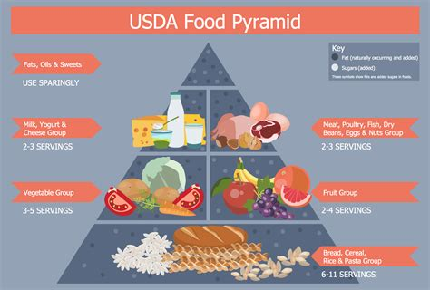 food pyramid food guide pyramid pictures posters news and videos on