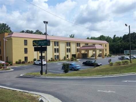 free puppies in fayetteville nc quality inn fayetteville in fayetteville nc free outdoor pool pets