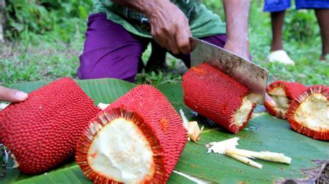 Minyak Promo Di minyak sari buah merah papua harga promo autos post