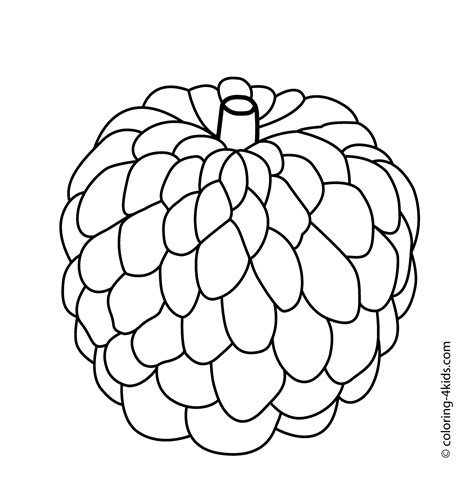 custard apple coloring page custard apple fruits coloring pages for kids printable