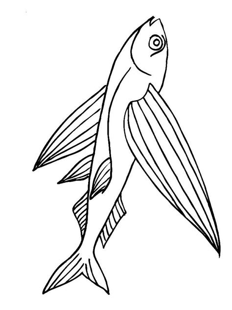 Flying Coloring Pages flying fish coloring pages and print flying fish