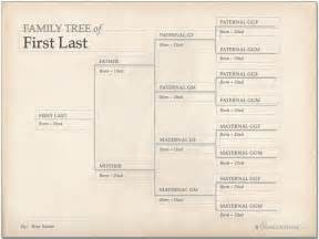 one sided family tree template 25 best ideas about tree templates on