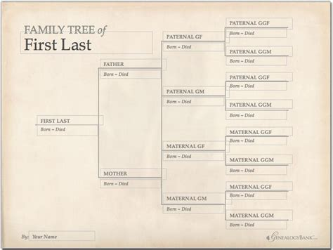 best 25 genealogy chart ideas on pinterest family tree