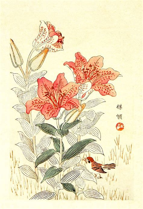 disegni di fiori giapponesi arte giapponese fiori e uccelli in botanica ste poster