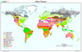 Biomes Of The World Map by Gallery For Gt Biome Map