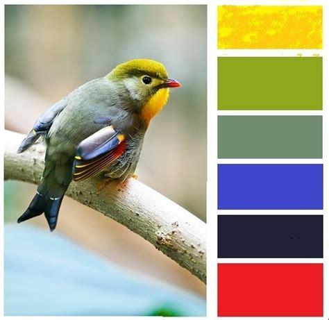 47 best images about color schemes on pinterest hue