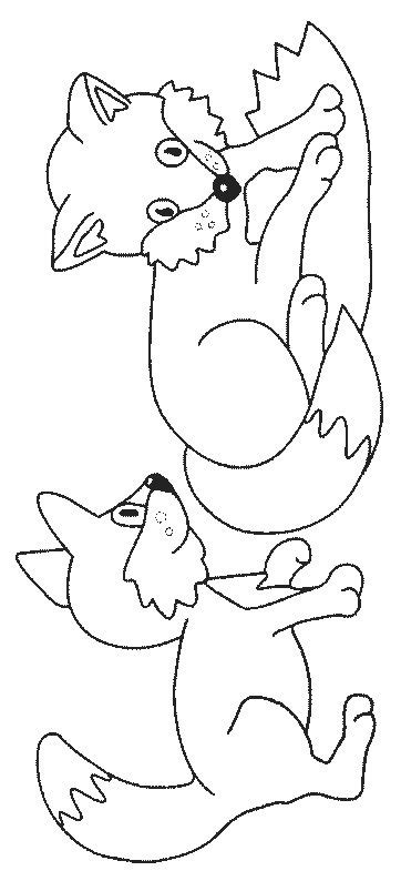 coloring page baby fox fox coloring pages color book