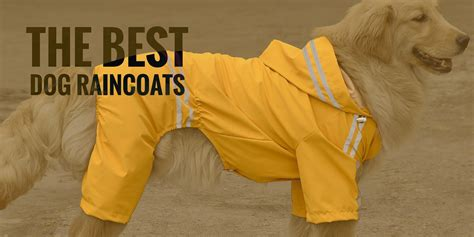 raincoat for dogs top 5 best waterproof raincoats with 2018 edition