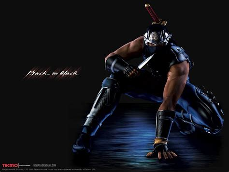 Bor Ryu Ryu Hayabusa Wallpapers Wallpaper Cave