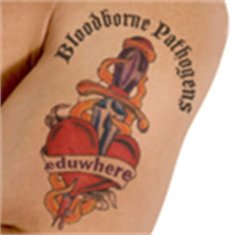 tattoo infection control training eduwhere bloodborne pathogens and infection control for