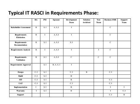 rasci in project management it