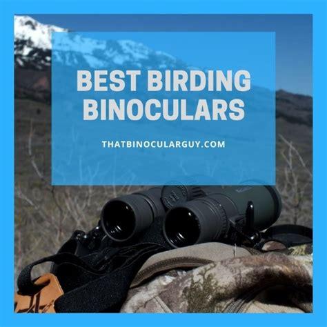 best bird binoculars 5 best binoculars for bird for 2017 revealed