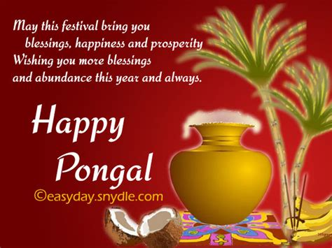 pongal wishes messages and pongal greetings   easyday
