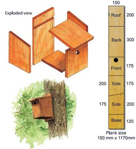 make a nest box bto british trust for ornithology