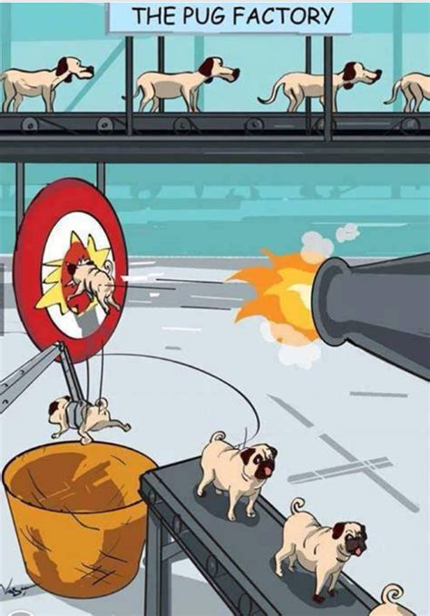 the pug factory the pug factory jokes memes pictures