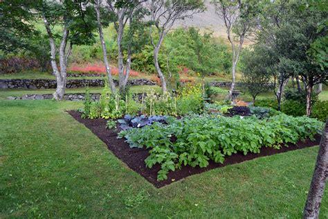 fare orto in giardino skrudur orto artribune