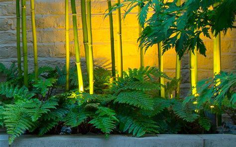 small garden design belgravia garden mylandscapes garden