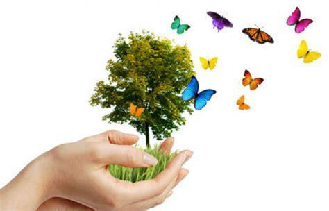 imagenes niños medio ambiente 191 por qu 233 celebrar el d 237 a mundial del medio ambiente