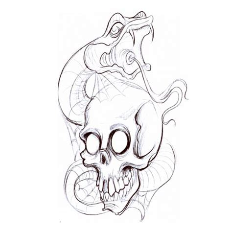 snake skull tattoo designs snake skull3 snake design flash pictures