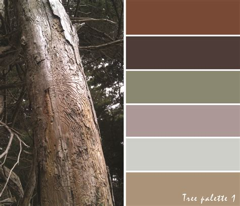 maria torti blog color combinations maria torti blog color palettes from nature