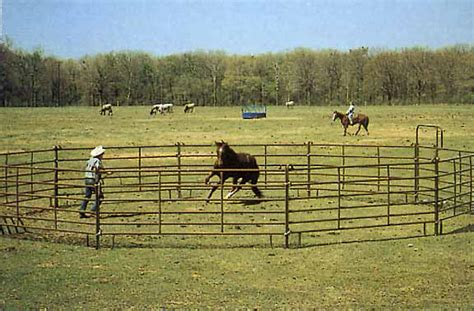 pen panels equestrian supply fence chainlink ornamental post and rail split rail