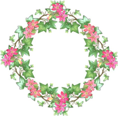 cornici a fiori cornici fiori 162