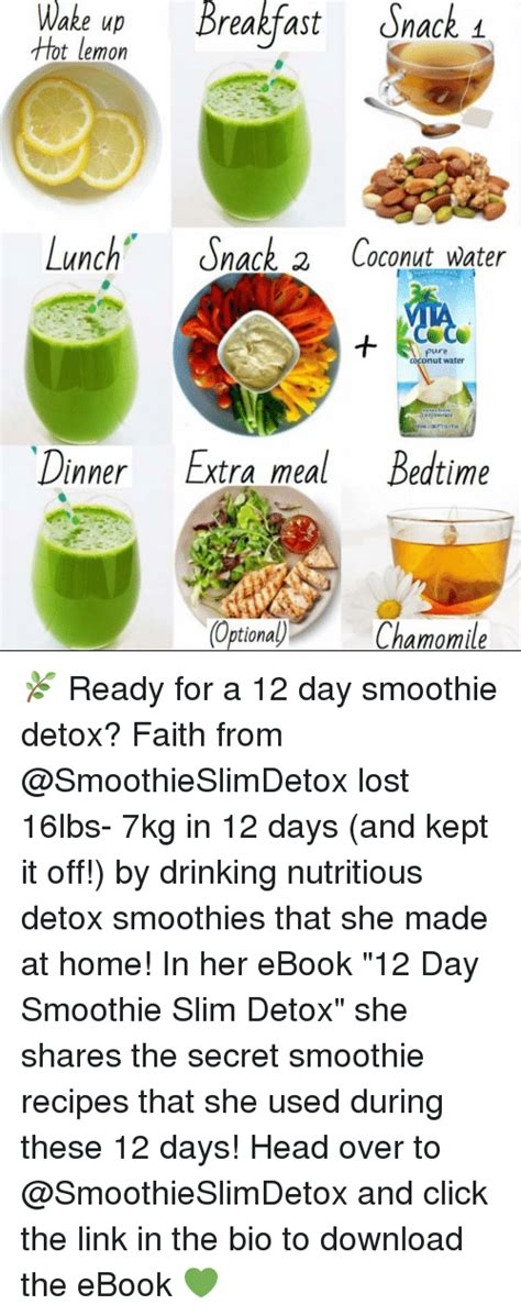 2 Day Smoothie Detox by Meme When You Try To Caffeinate Yourself And