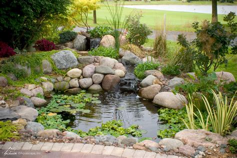 aquascape diy lotus watergardens ponds ecosystem pond kits