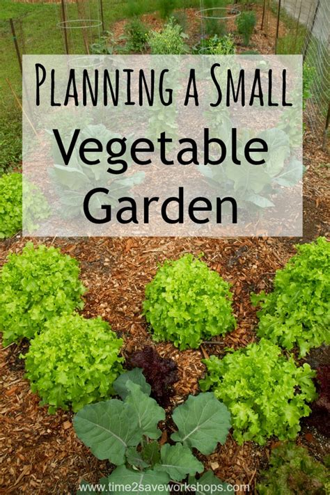 small spaces planning a small vegetable garden