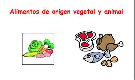 Imagenes De Origen Animal Vegetal Y Mineral | dibujos de alimentos de origen animal vegetal y mineral