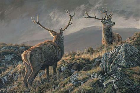 boat sales red deer wildlife paintings for sale