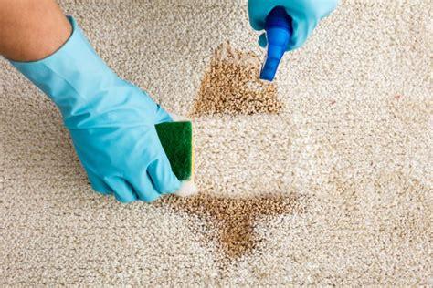 come pulire i tappeti fatto in casa da benedetta