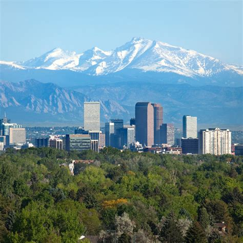 Search Denver Co Denver Co Sprague Pest Solutions