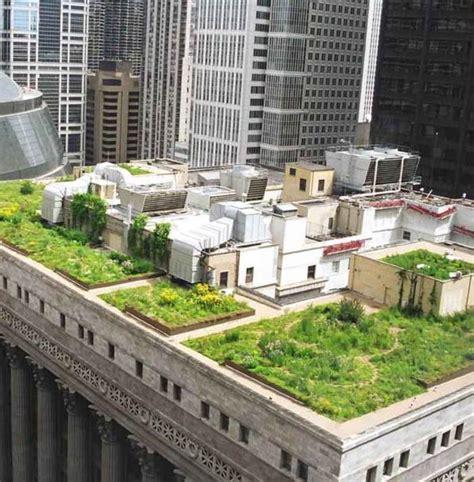 giardini sui tetti i giardini sui tetti salvano l ambiente e fanno risparmiare