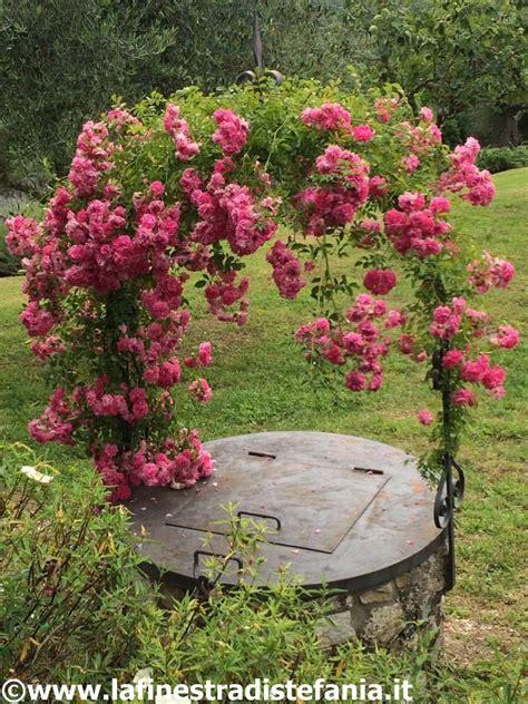 su fiori la finestra di stefania arco di ferro con ricanti