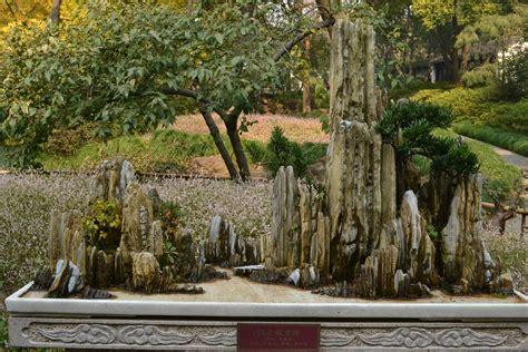 Bonsai Rock Garden Gowan Cypress Bonsai Rock Bonsai Garden Ideas Chsbahrain
