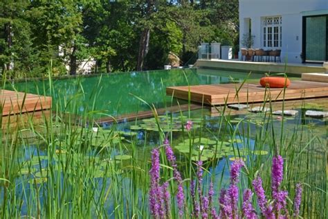 natural swimming pool your own private paradise natural swimming pools by biotop