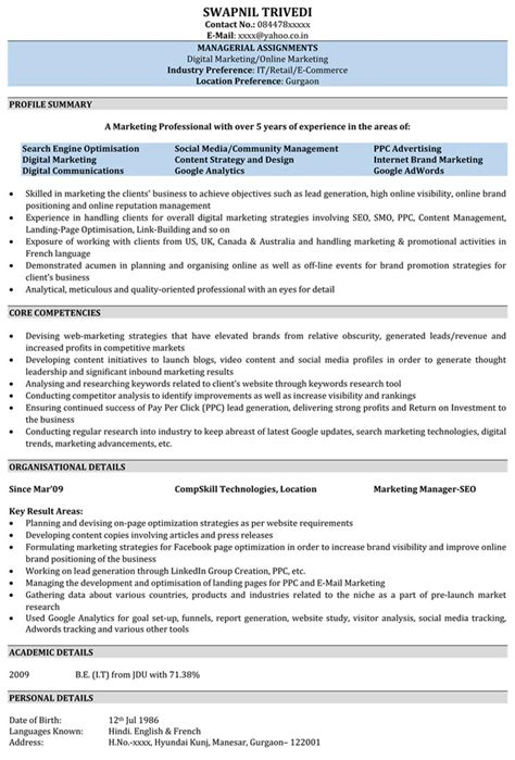 seo writer resume