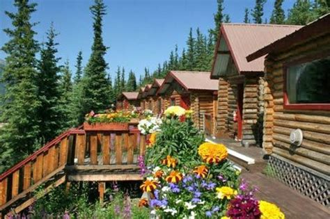 Denali Cabins Review by Denali S Nest Cabins Updated 2017 Hotel Reviews