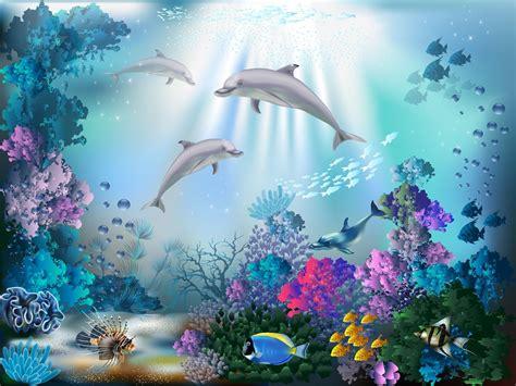imagenes para fondo de pantalla delfines hermosos fondos de pantalla de arrecifes de coral