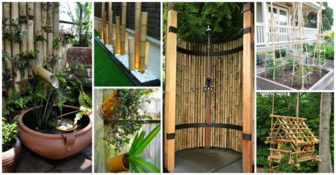 fantastic ways  decorate  yard  bamboo trees