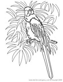 hawaii coloring pages coloring pages hawaii coloring pages
