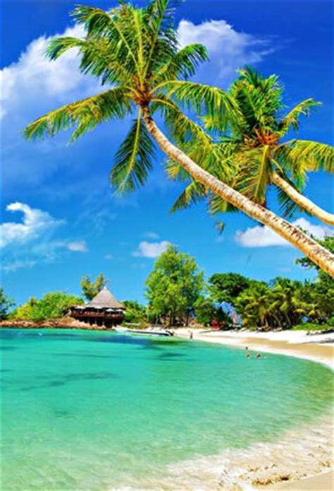 kerala beach tour packages  best beach tours & holidays in