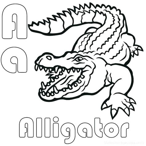 Alligator Coloring Sheets by Alligator Coloring Pages Alligator Coloring Page Alligator