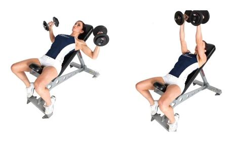 dumbbell bench flyes 7 best exercises you can try to improve your posture bodybuilding estore