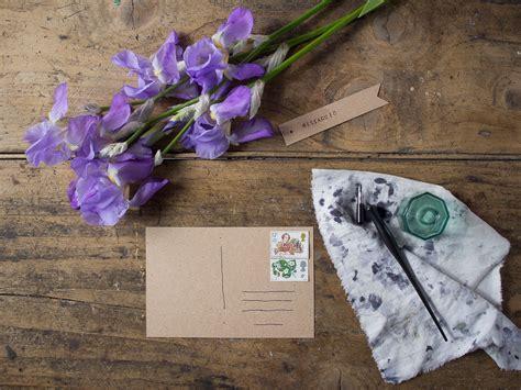 iris linguaggio dei fiori linguaggio dei fiori iris acacia rosa canina