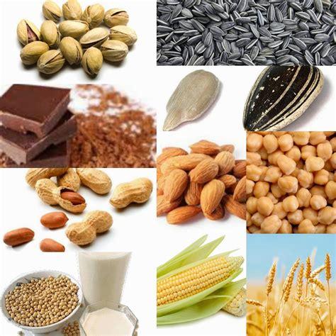 el magnesio  la salud humana  ecoosfera