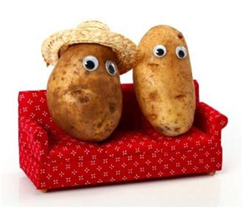 couch potato quiz nerdtests com test do you like potatoes